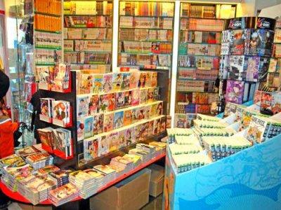 Enquête sur les japonais et les mangas